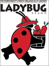 Ladybug_brand